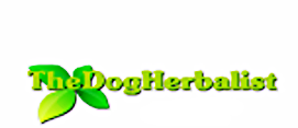 Dog Herbalist, 	 dog health, 		 dog medicine, 	 herbs for dogs, 	 homeopathic remedy for dogs, 	 natural dog herbal remedies,